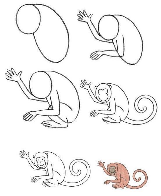 วิธีการวาดรูปสัตว์ลิงด้วยวิธีง่าย ๆ